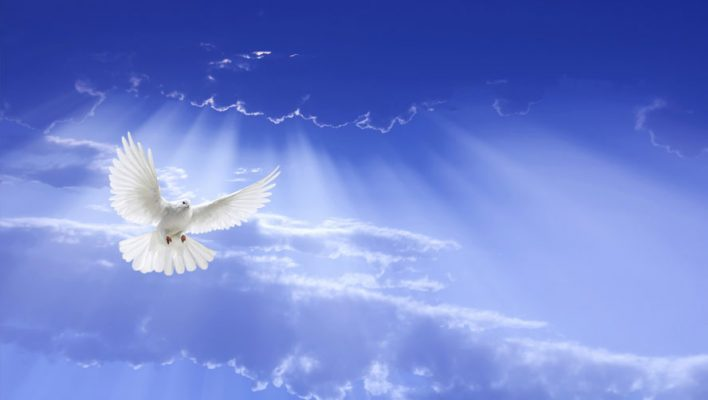 Adult Formation Opportunity on Sunday May 15th on The Holy Spirit